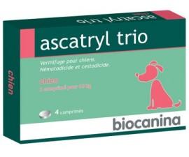 Ascatryl trio chiens 4 comprimés